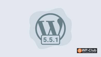 Фото WordPress 5.5.1 с временной поддержкой устаревших глобальных переменных JavaScript