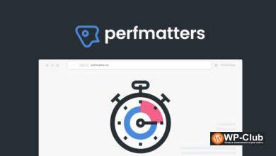 Фото Perfmatters 1.6.4 — плагин производительности WordPress