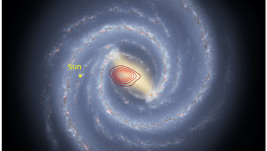 Фото Треть всех звезд Млечного Пути образовались в результате слияния с другой галактикой 10 млрд лет назад