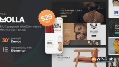 Фото Molla 1.2.4 — тема WordPress WooCommerce для любого типа бизнес-сайтов