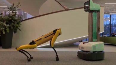 Фото Сбер купил робота-пса Spot от Boston Dynamics